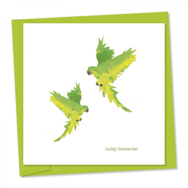 parakeets noisy bastards